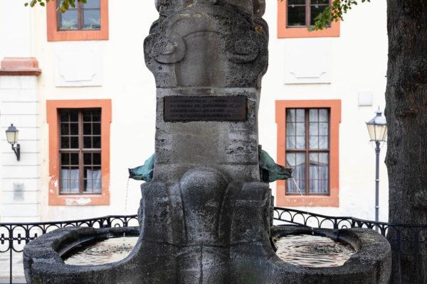 Altenburg Skatbrunnen