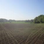 fruchtbares Altenburger Land AOweb