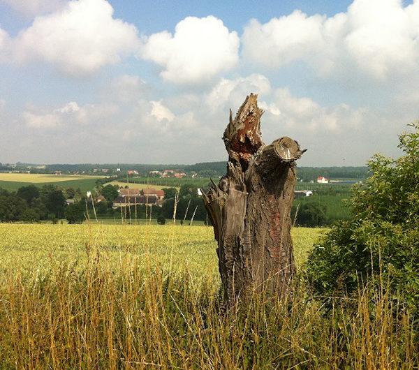 Pilgern im Altenburger Land AOweb